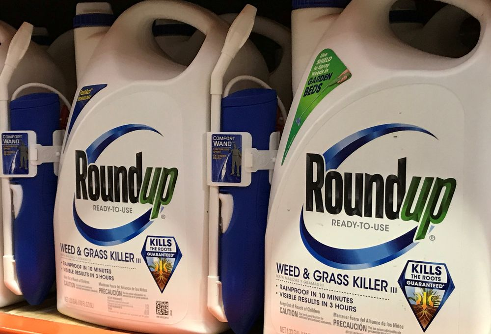 Monsanto Co's Roundup is shown for sale in Encinitas, California, June 26, 2017. — Reuters pic