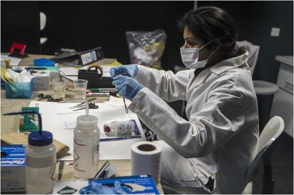 A forensic scientist analyses samples in the DNA and Serology department at Punjab Forensic Science Agency in Lahore January 13, 2015. — Reuters pic