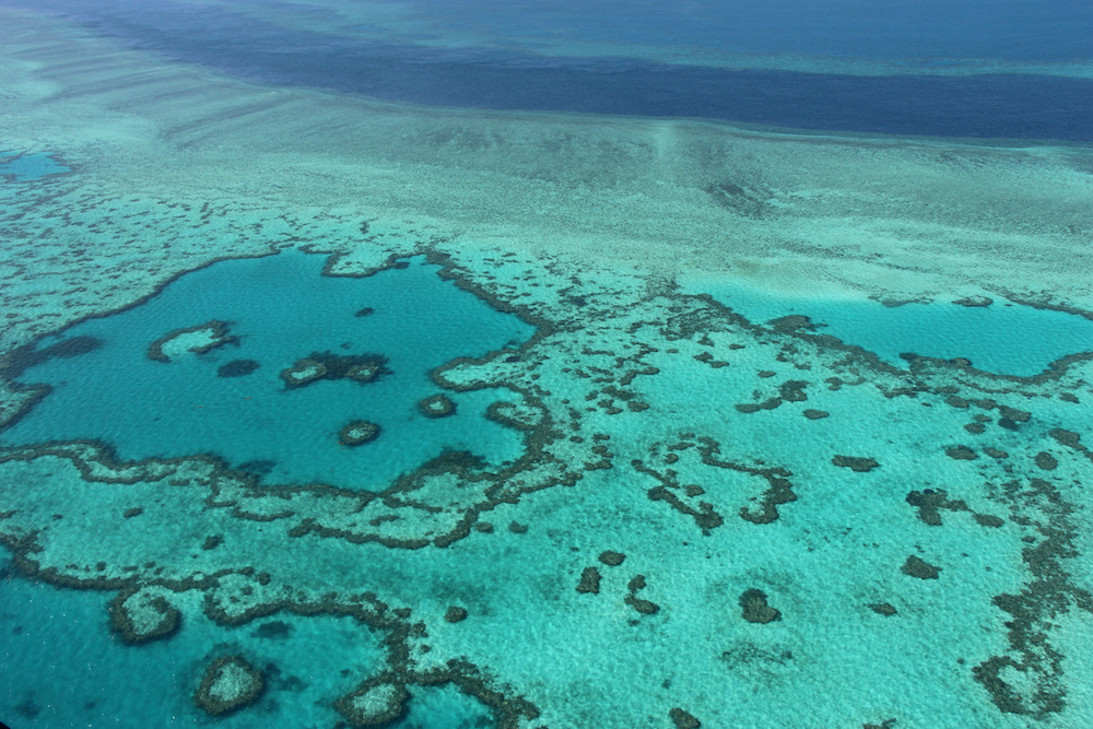 Coral along large swathes of the 2,300-kilometre reef have been killed by rising sea temperatures linked to climate change, leaving behind skeletal remains in a process known as coral bleaching. — AFP