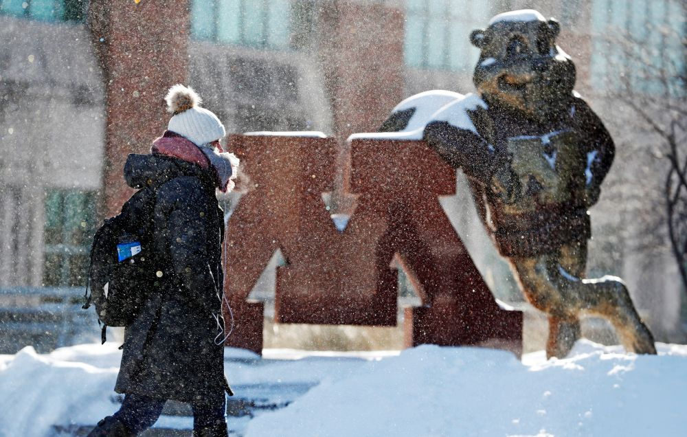 A student is dressed for subzero temperatures while walking to the student union at the University of Minnesota in Minneapolis, Minnesota, US, January 29, 2019. — Reuters pic