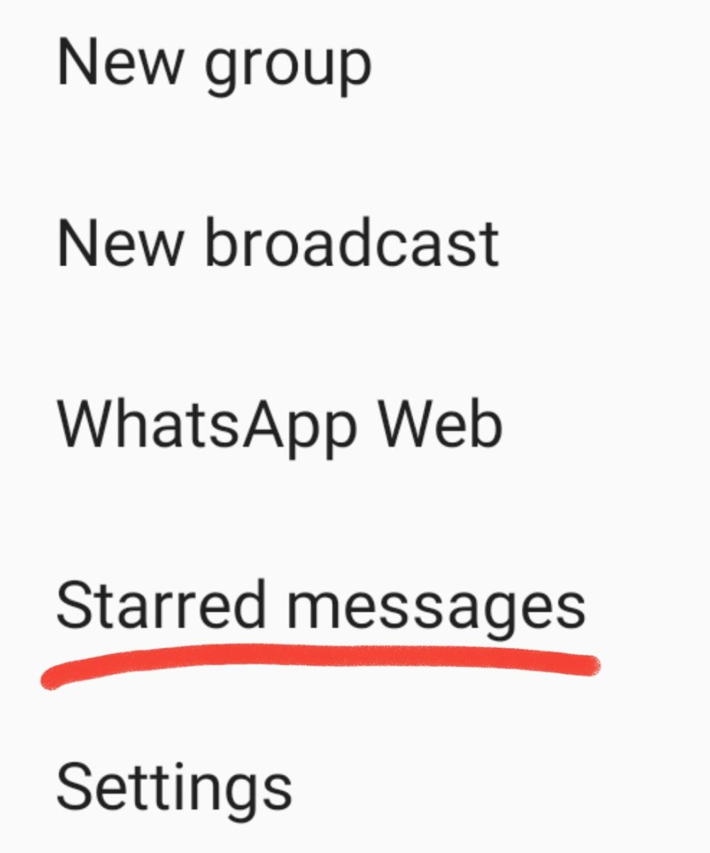 Lookout for the 'Starred Messages' tab to view your bookmark messages. — Screengrab via WhatsApp
