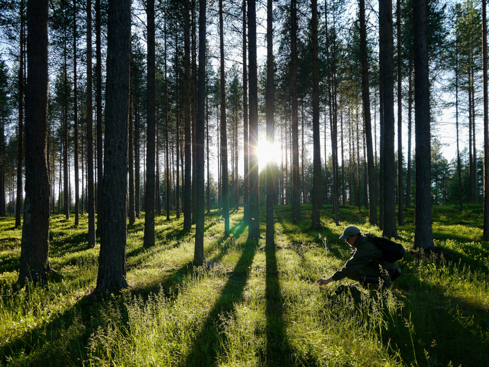 Taking the time to be outdoors is good for morale. — Tarja Hoikkala/Vastavalo/Visit Finland handout pic via AFP-Relaxnews