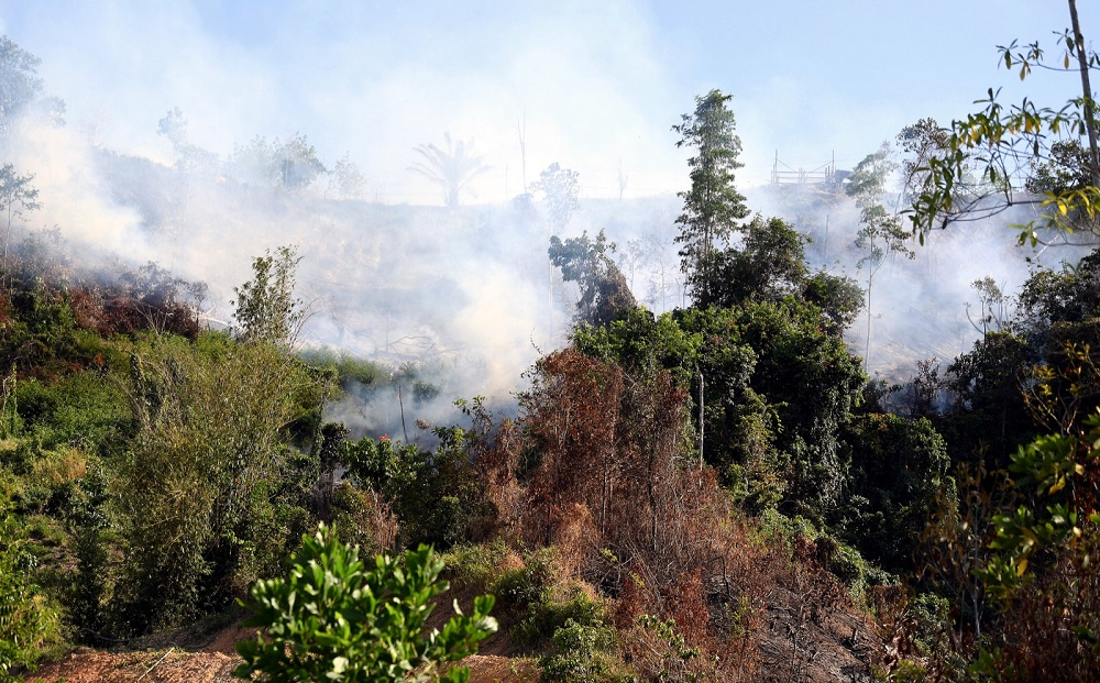 Selangor Department of Environment director Nor Aziah Jaafar said the department had taken three samples from the illegal site, located near a hypermarket, to be analysed by the Department of Chemistry Malaysia. — Bernama pic
