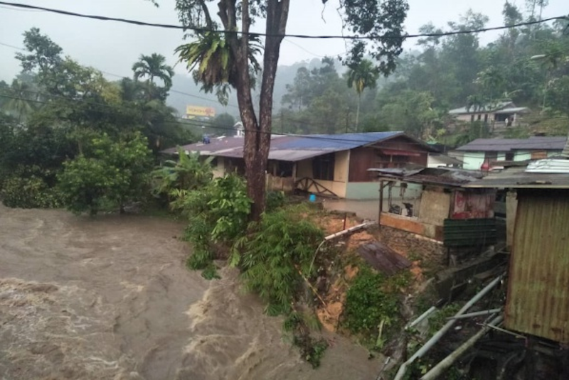 Eight people were injured when a tree fell on five houses during a storm at the 17th mile, Gombak on March 28. — Picture via Twitter/Bernamadotcom