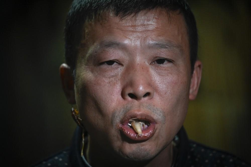 Cockroach farmer Li Bingcai eats an exuvial roach at his farm in Yibin, China's southwestern Sichuan province March 25, 2019. — AFP pic