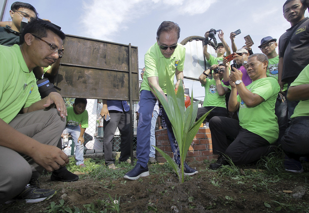 Datuk Seri Anwar Ibrahim plants a coconut sapling in conjunction with the Bagan Pinang state-level Earth Day Celebration/Port Dickson Agricultural Office Day event in Port Dickson April 21, 2019. — Bernama pic