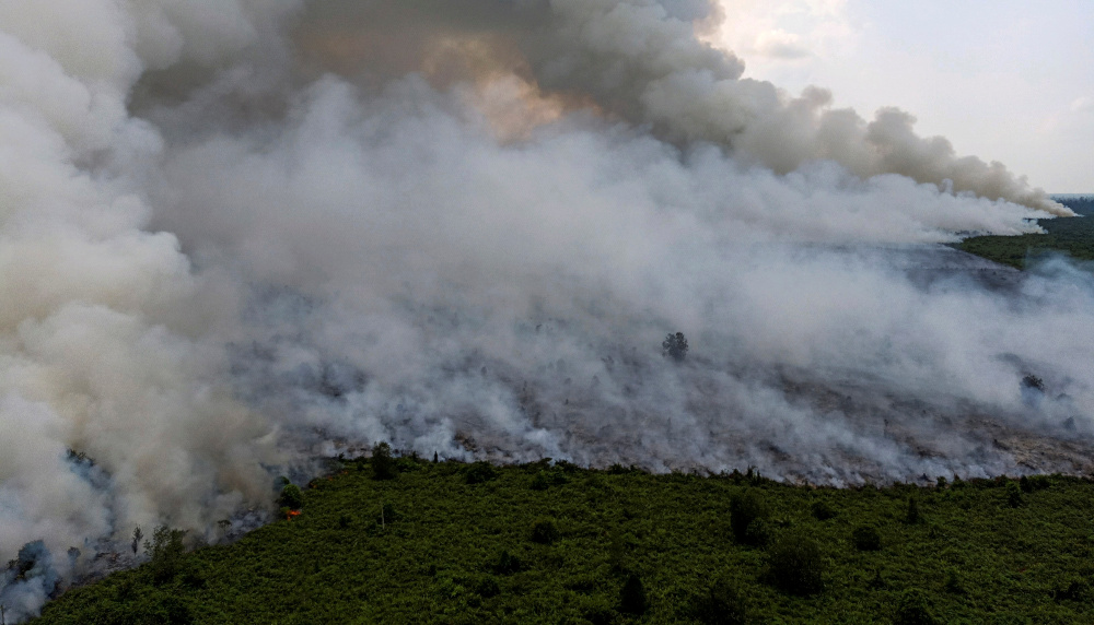 Smoke billows during a land fire in Musi Banyuasin near Palembang, South Sumatra province, Indonesia, August 14, 2019 in this photo taken by Antara Foto. — Picture from Antara Foto/Nathan via Reuters