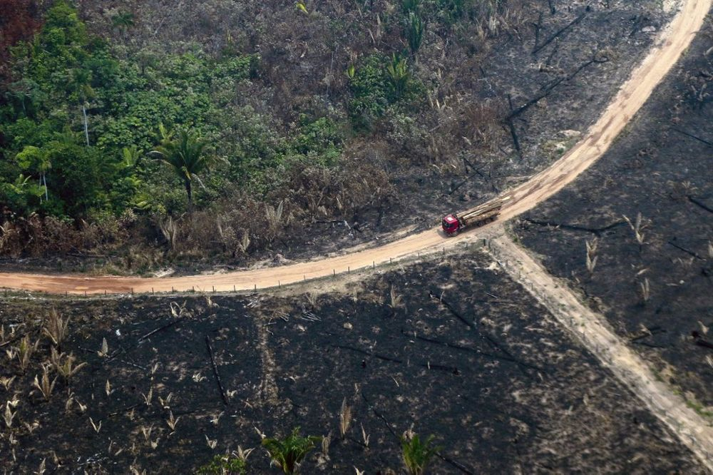 Aerial view of burnt areas of the Amazon rainforest, near Boca do Acre, Amazonas state, Brazil, in the Amazon basin, on August 24, 2019. — AFP pic