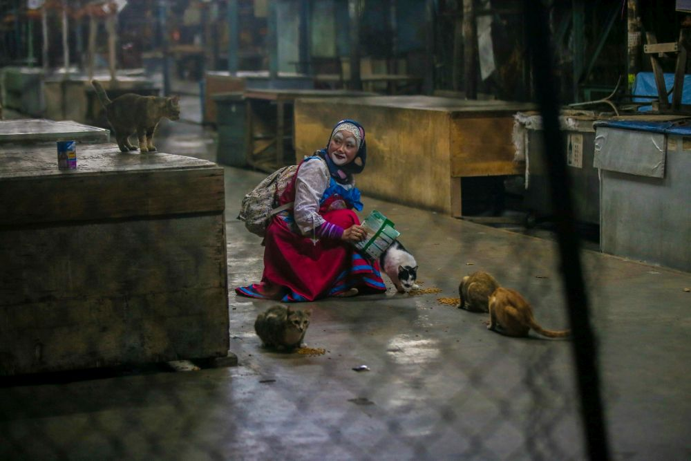 Nazirah is pictured feeding stray cats at a market in Ipoh. — Picture by Farhan Najib
