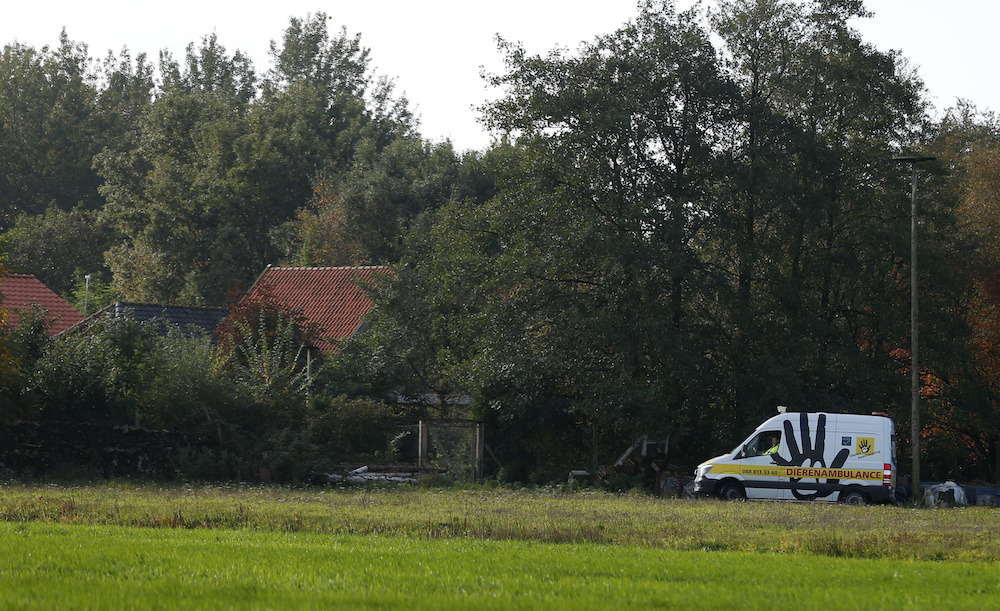 An animal ambulance is seen at the site of a remote farm where a family spent years locked away in a cellar, according to Dutch broadcasters' reports, in Ruinerwold, Netherlands October 16, 2019. — Reuters pic