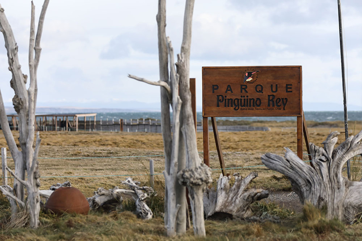 Welcome to the wilderness: The entrance to Parque Pingüino Rey.