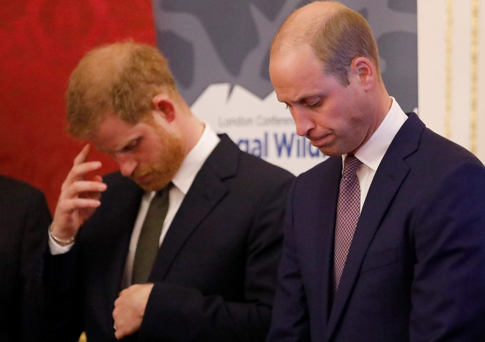In this file photo taken on October 10, 2018, Britain's Prince William, Duke of Cambridge (right) and Prince Harry, Duke of Sussex, host a reception to open the 2018 Illegal Wildlife Trade Conference at St James' Palace in London. — AFP pic