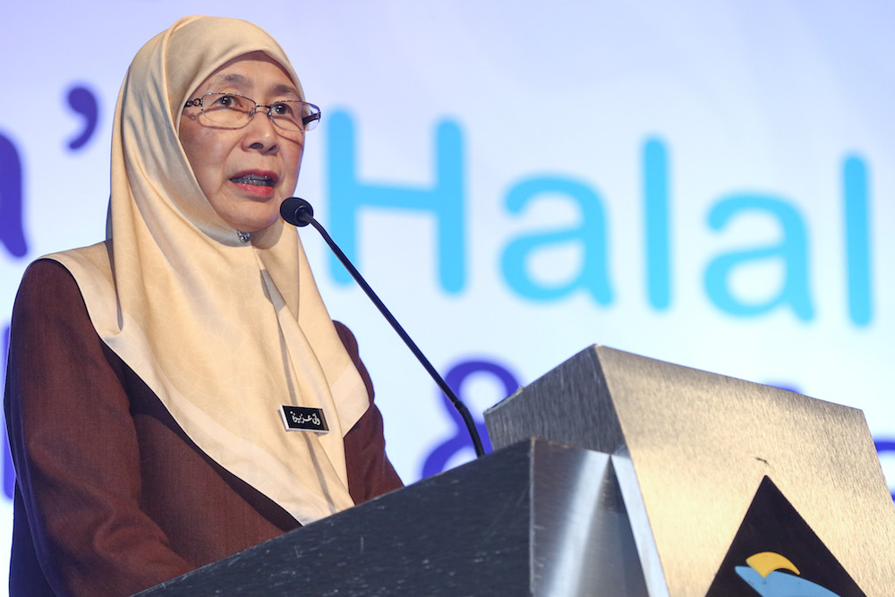 Deputy Prime Minister Datuk Seri Dr Wan Azizah Wan Ismail speaks during Malaysia's Halal Inclusion Roundtable and Masterclass in Putrajaya November 5, 2019. — Picture by Yusof Mat Isa