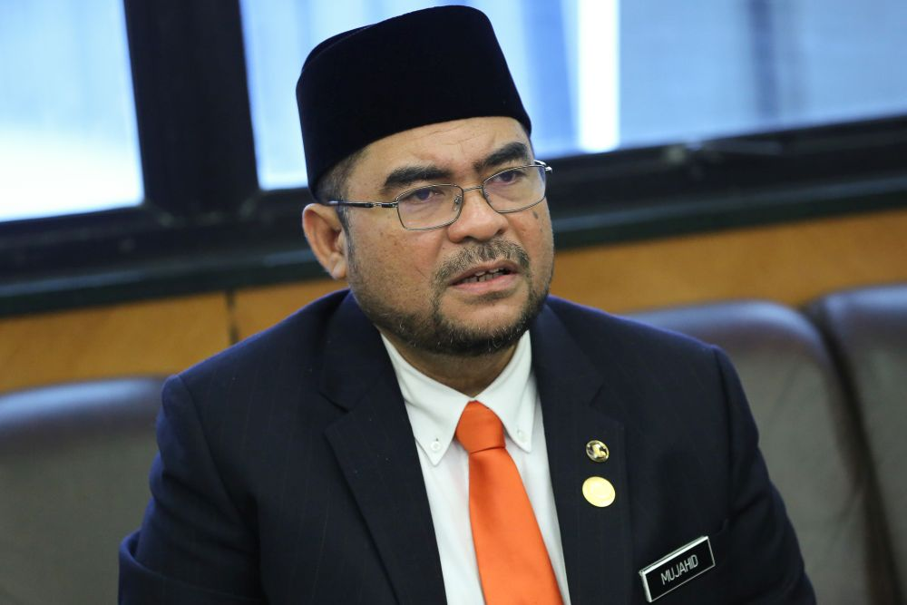 Minister in the Prime Minister's Department (Religious Affairs) Datuk Seri Mujahid Yusof Rawa is pictured at Parliament in Kuala Lumpur November 28, 2019. — Picture by Yusof Mat Isa