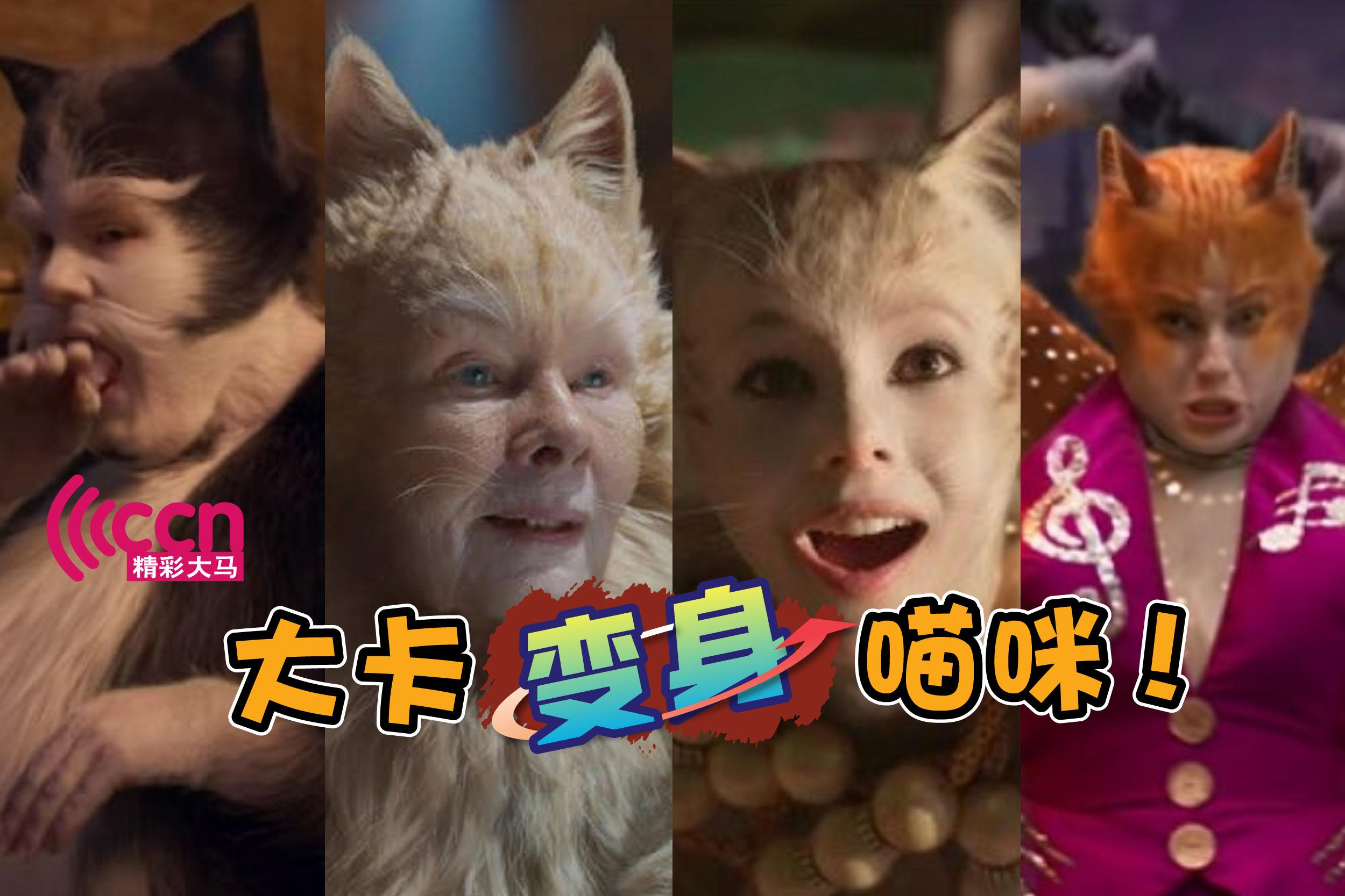 演出《Cats》的演员,你又认出了多少位呢?-精彩大马制图-