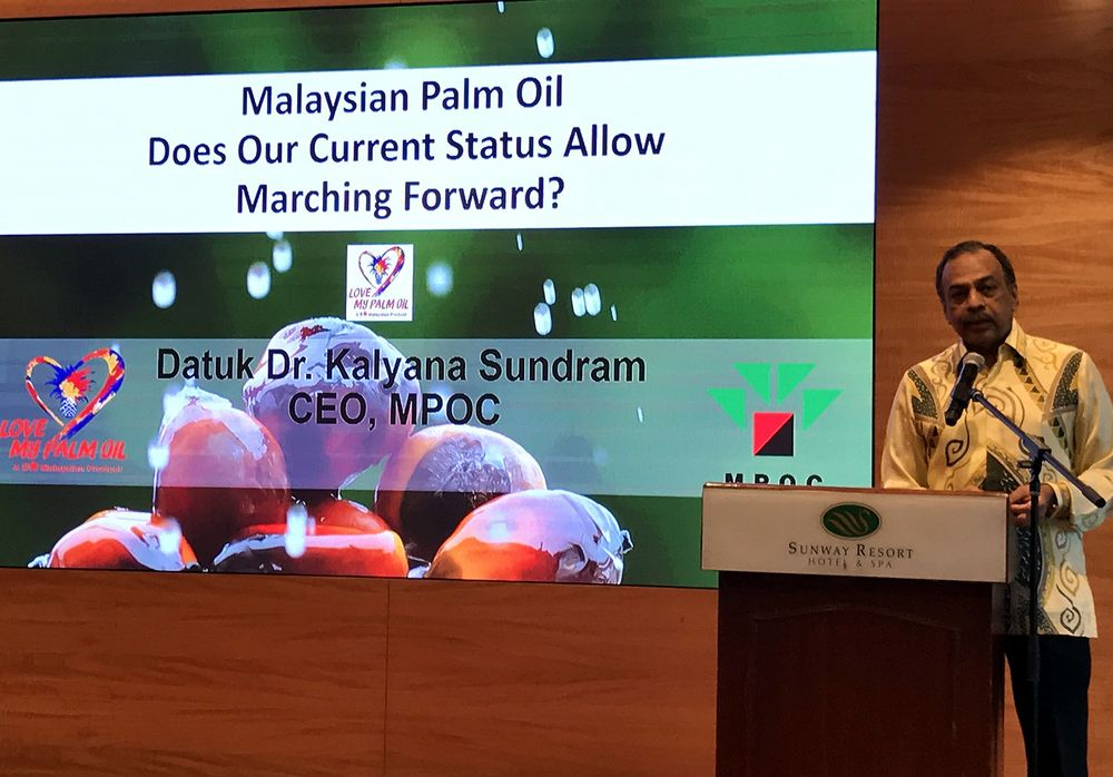 File picture shows Malaysian Palm Oil Council (MPOC) chief executive officer Datuk Dr Kalyana Sundram delivering his keynote address at the Second Global Indian Millers Conference in Kuala Lumpur, December 21, 2019. — Bernama pic