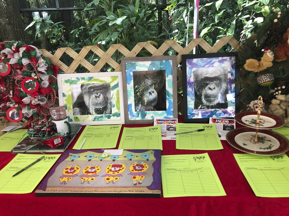 Some of the 'ape art' created by the orangutans and chimpanzees that live in the Centre for Great Apes (CGA), a non-profit sanctuary in Wauchula, Florida, sold in a gift shop and at a silent auction in a fundraising event— AFP pic