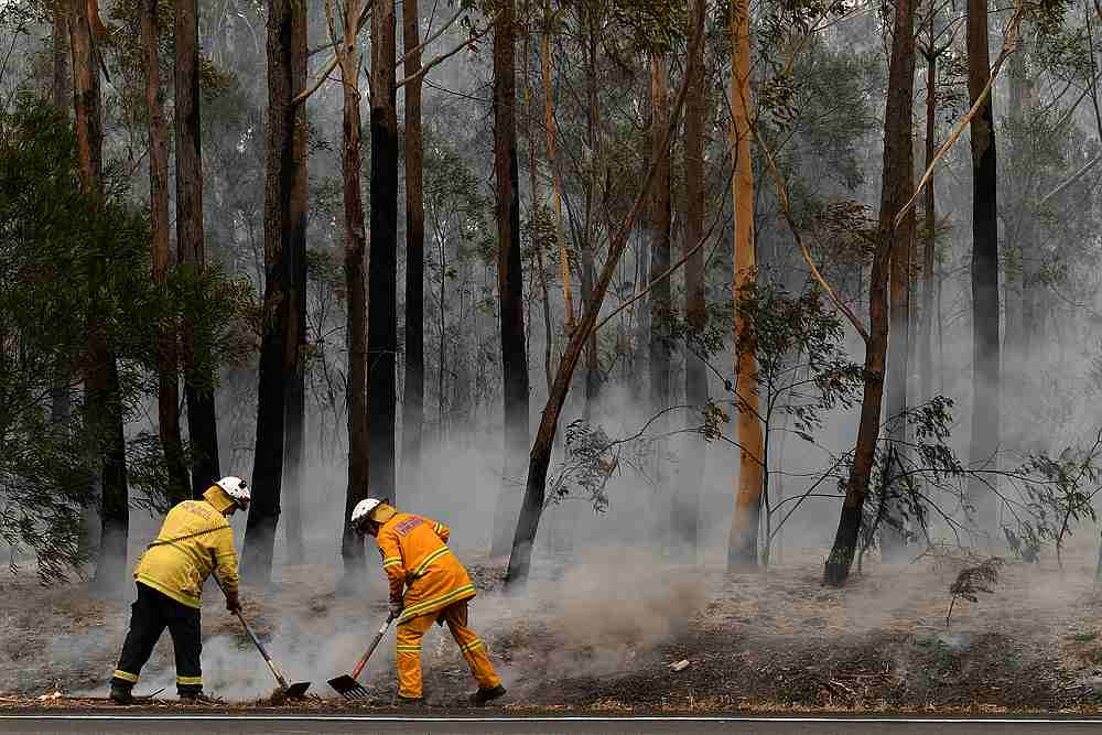 Rural Fire Service volunteers (RFS) and Fire and Rescue NSW officers (FRNSW) contain a small bushfire which closed the Princes Highway south of Ulladulla, Australia, January 5, 2020. — AAP Image/Dean Lewins via Reuters
