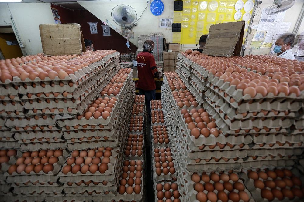 The affected eggs can be identified by the stamp 'CEM014' on the eggs, said the Singapore Food Agency (SFA) in its Facebook update. — Picture by Ahmad Zamzahuri
