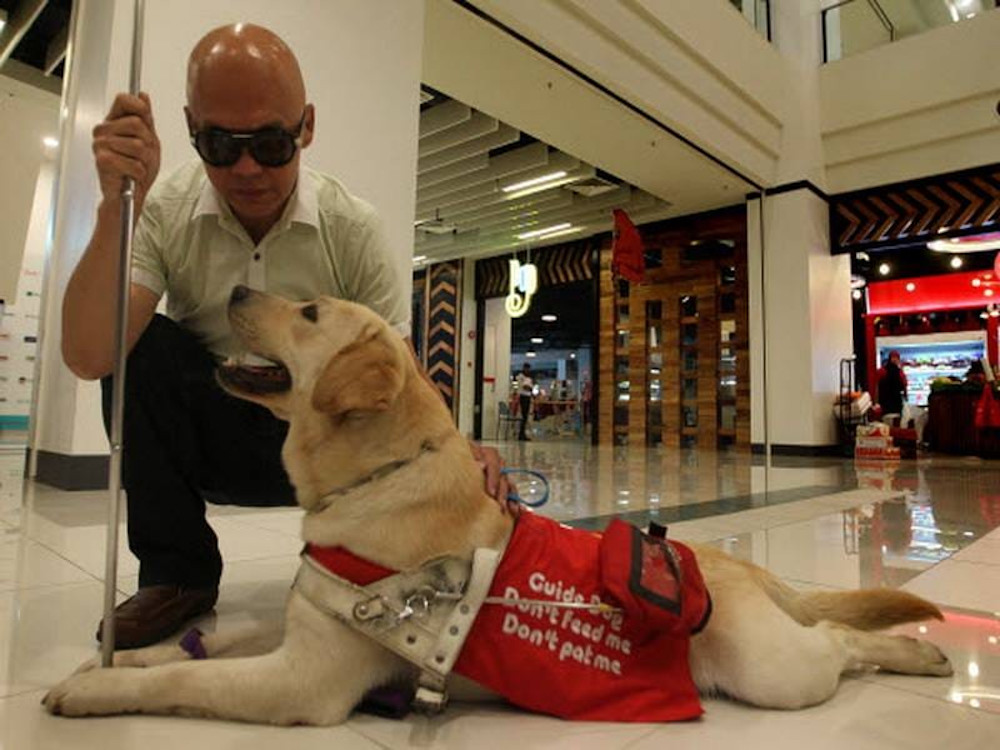 Stevens Chan said that LaShawn's help allowed him to lead an independent life despite being visually impaired. — Picture from Facebook/stevens.chan.35 and Facebook/DogsForSight