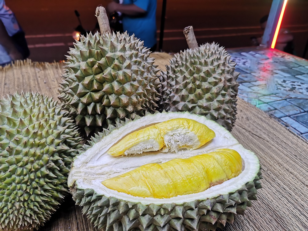 According to a company linked to the Pahang state government, durian farmers in Raub, Pahang will still be able to make a profit even when selling the Musang King Grade A durians produced at the proposed fixed rate of RM30 per kg. — Foto oleh Muhammad Yusuf Ibrahim