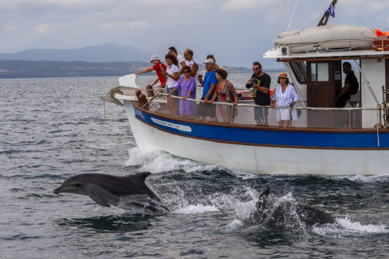Tourists take pictures during a dolphin watching tour from a boat in the Amvrakikos gulf in Preveza, northwestern Greece, on August 6, 2020. ― AFP pic