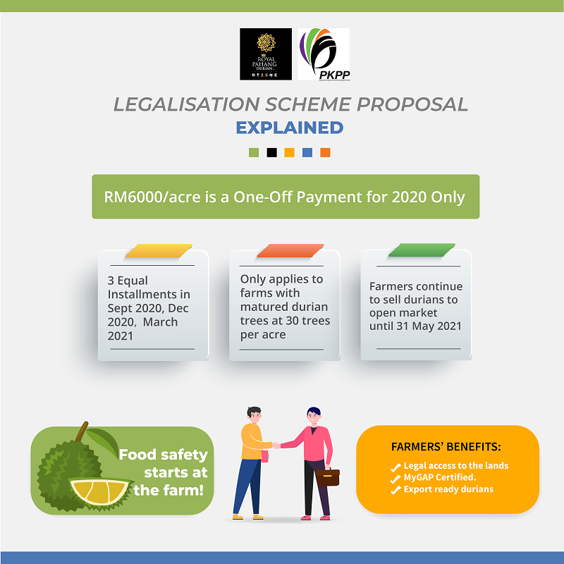 Infographic explanation of the legalisation scheme. ― Picture courtesy of RPDR-PKPP