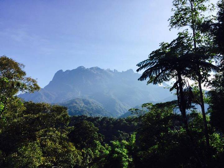 The Kinabalu Park will be closed from September 25 until October 8. — Picture via Facebook