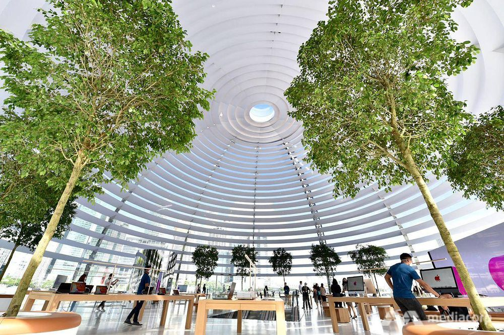 "Visitors who enter the store — which opens at 10am on Thursday and operates on an appointment-only basis that day — will ""encounter a dramatic reveal into the massive volume of the dome"" where they may browse Apple's products. — Jeremy Long/CNA pic via TODAY"