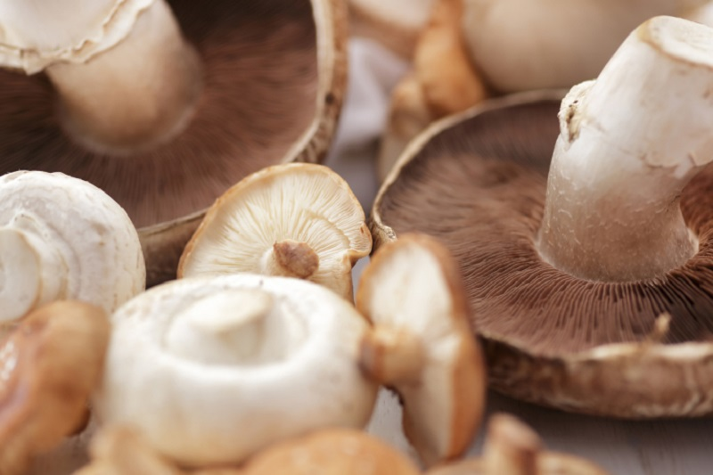 In the future, mushrooms could be used to create eco-friendly packaging. ― Istock.com/AFP pic