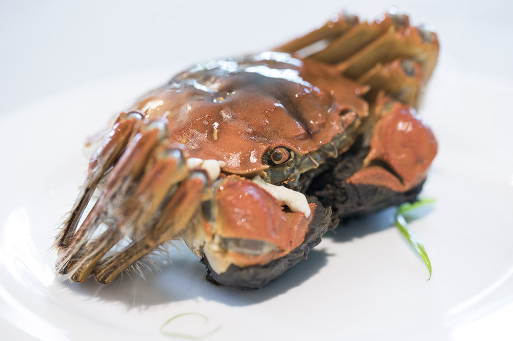 The hairy crab is an autumnal delicacy. — Pictures by CK Lim