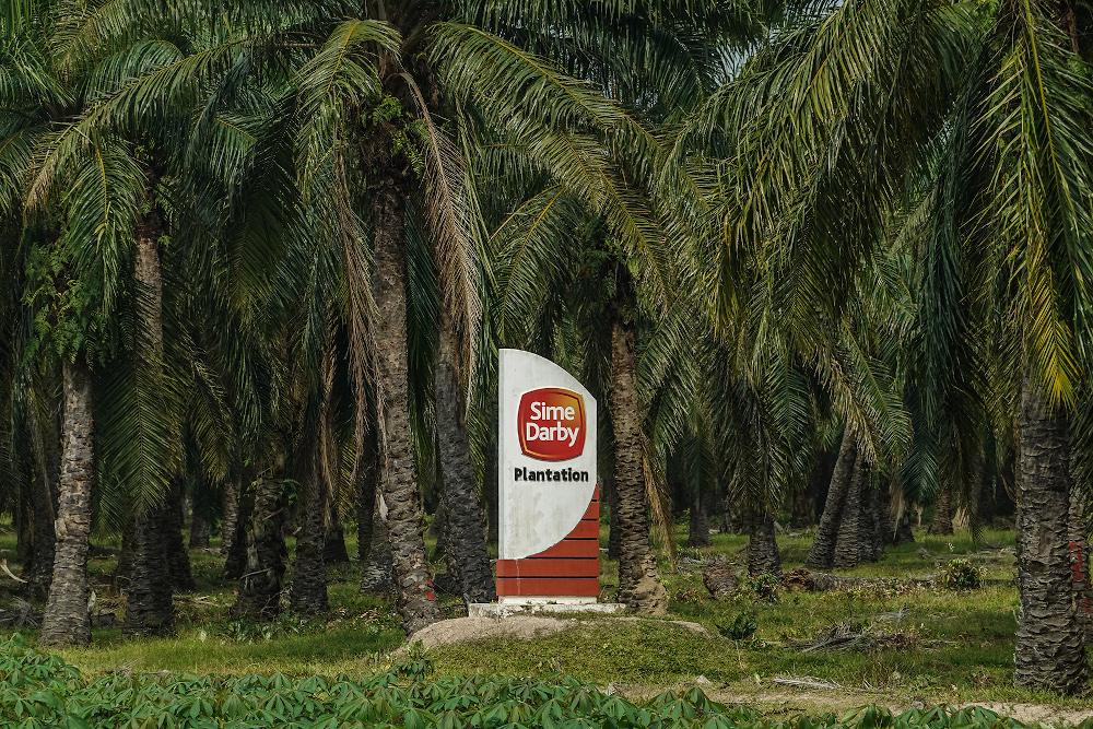 As at 9.56am, Sime Darby Plantation lost 11 sen to RM5.06, with 70,400 shares traded. — Picture by Miera Zulyana