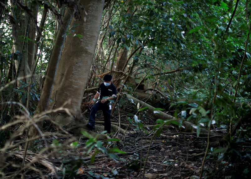 Paranormal investigator Charles Goh looks for signs of former settlements in a jungle near Yishun, in Singapore October 30, 2020. — Reuters pic