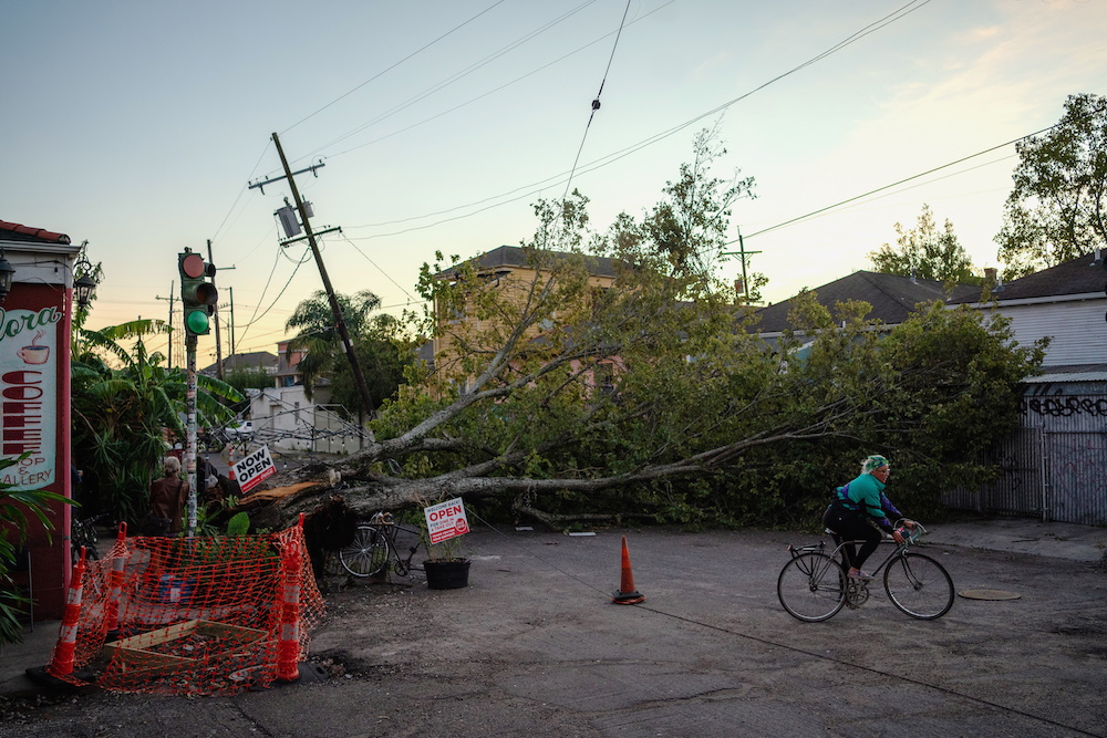 A downed tree lies in the street outside of Flora Gallery and Coffee Shop after Hurricane Zeta swept through New Orleans, Louisiana October 29, 2020. — Reuters pic