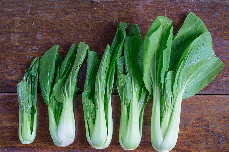 Leafy and crunchy 'siu bak choy' impart a lovely dose of green.