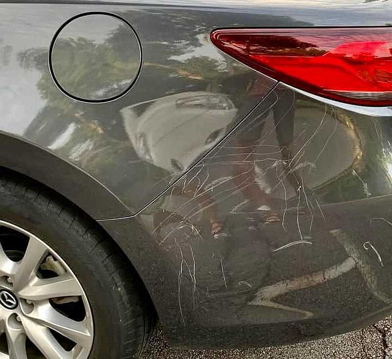Aftermath of the peacock attack in Singapore. — Picture courtesy of Facebook/ Motorist Singapore