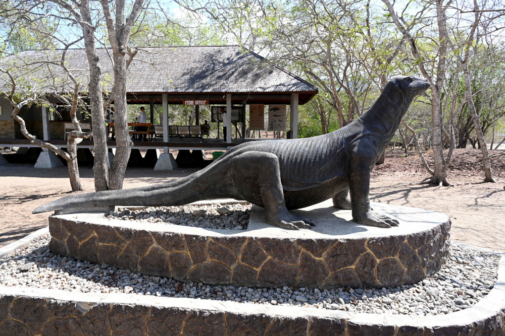 This picture taken November 22, 2019 shows a statue of a Komodo dragon welcoming visitors to the Komodo national park in the Island of Komodo as conservationists are slamming plans to turn the natural habitat of endangered Komodo dragons into a Jurassic Park-style attraction. — AFP pic