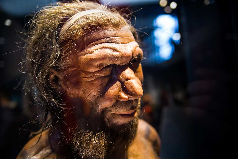 Did you know 63% of Bangladeshis have Neanderthal genes?