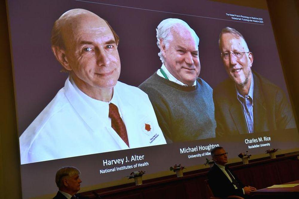 Hepatitis C virus discovery gets Nobel Prize 2020 in Medicine