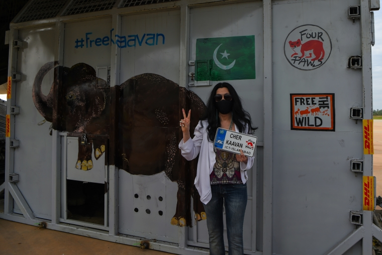 US pop singer Cher poses in front of the crate containing Kaavan the Asian elephant upon his arrival in Cambodia from Pakistan. — AFP pic
