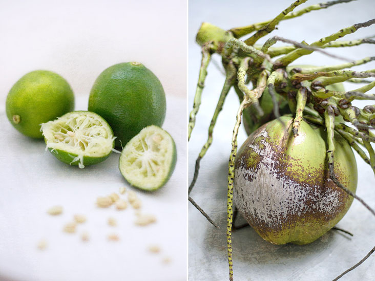 Limes (both its zest and juice) and coconut water help lift up an otherwise sweet dessert.