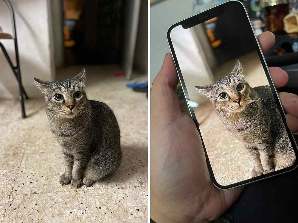 Though it's only 5.4-inches, the OLED display on the iPhone 12 mini is still pretty good as is the Portrait mode. — Picture by Erna Mahyuni