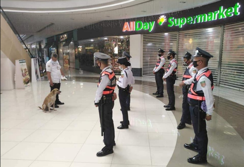 From stray to mall security team, Dogdog has come a long way. — Picture from Facebook/ONE CAVITE