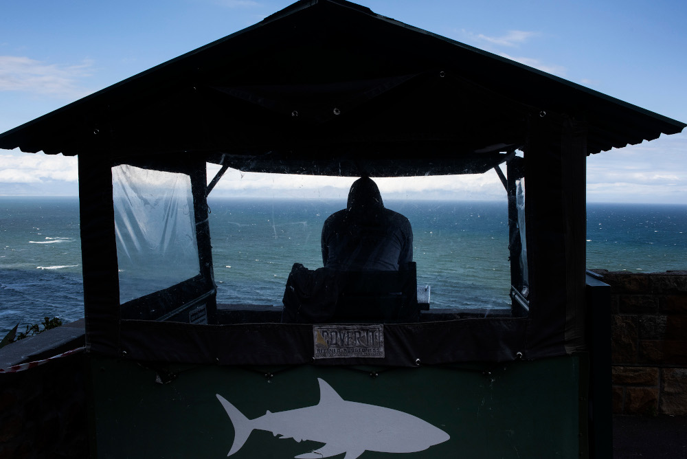 A shark-spotter sits in a hut high above Muizenberg beach, a popular swimming and surfing venue, watching out for sharks, in Cape Town November 17, 2020. — AFP pic