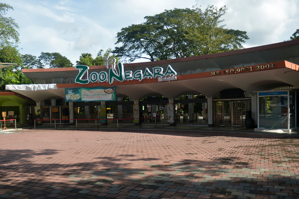 Zoo Negara is offering a 40 per cent discount on the prices of adult and children's tickets to over 16,000 tickets and purchases could be made through the Shopee platform. — Picture by Miera Zulyana