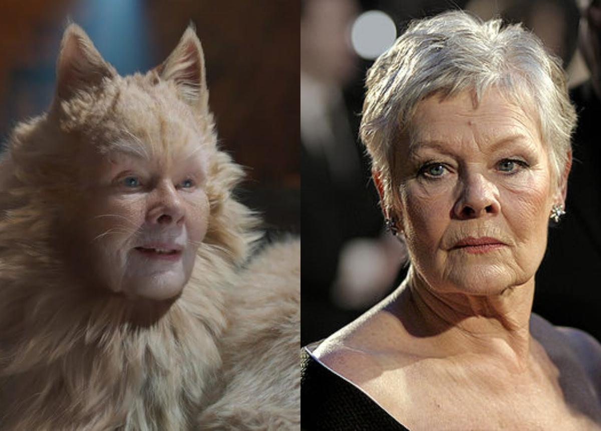 在电影中饰演猫咪长老的朱迪丝,化作猫咪后劈腿耍骚,也算是为了艺术牺牲啊!-精彩大马制图-