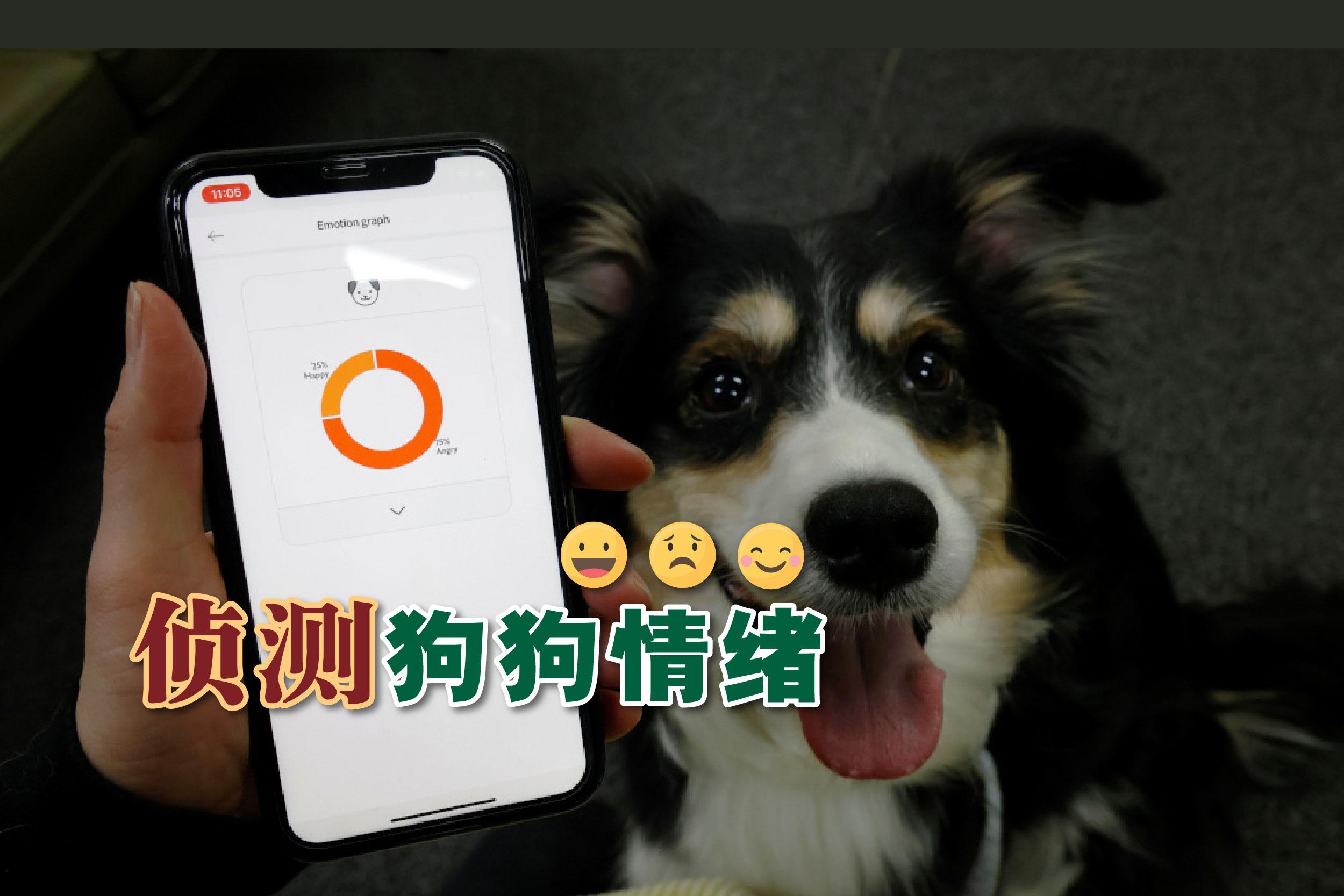 今年1月11日,Moon Sae-mi与她的狗Godot一起试用AI驱动的智能狗颈项圈Petpuls。-路透社/精彩大马制图-