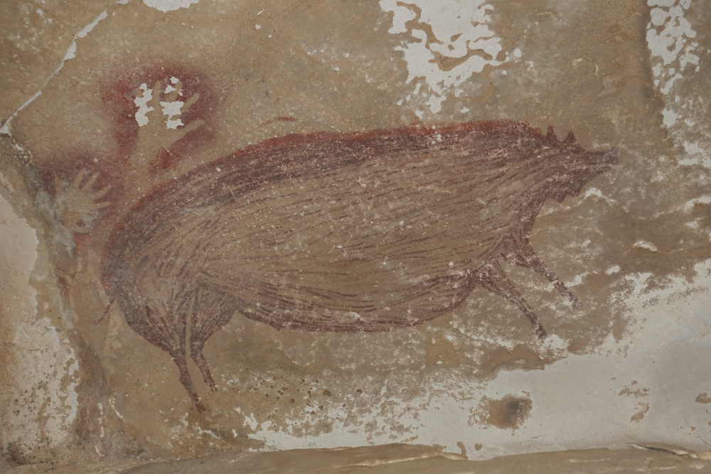 This undated handout photo shows a dated pig painting at Leang Tedongnge in Sulawesi, Indonesia. — Maxime Aubert/Griffith University handout pic via AFP