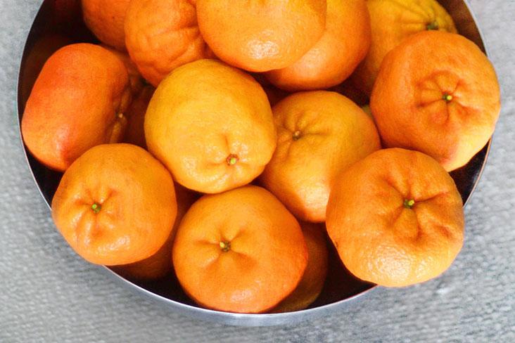 Have a surplus of mandarin oranges? Make a salad!