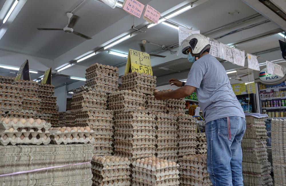 卫生部提醒消费者,为避免肠炎沙门氏菌引起食物中毒情况,须先将鸡蛋彻底清理干净才烹煮,且避免使用出现裂缝或已破损的鸡蛋。-马新社-